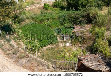 Looking down on a smallholding in rural North Macedonia. A small patch of land near a track has been cultivated with subsistence crops including corn. A rickety old shed provides shelter or storage. #1500705572