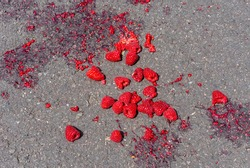Looking down onto a pile of fresh raspberries dropped on the road and partially squashed. The fruit is deep vibrant pink red colour and the juice stains the grey tarmac surface. Shot from above.