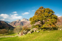 Looking over Langdale Boulders to the Pikes beyond. English Lake District.
