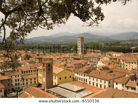 Looking over the rooftops of Lucca in Tuscany, Italy