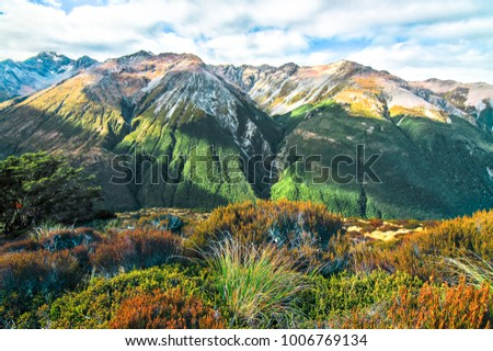 Looking south from the trail to Avalanche Peak in Arthur's Pass National Park, New Zealand. #1006769134