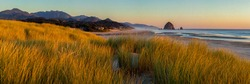 Looking south to Cannon Beach and Haystack Rock in Cannon Beach, Oregon