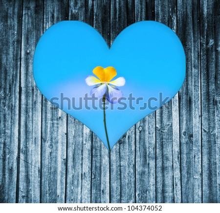 looking through a heart shaped window on a wooden door to a flower