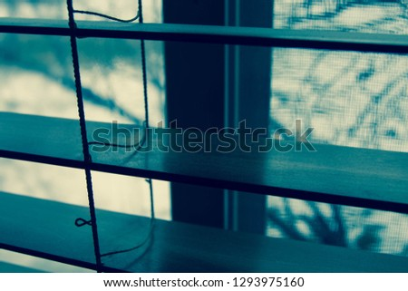 Looking through shades out window #1293975160
