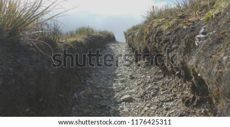 looking up a deeply erroded trail