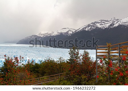 Lookout on the walkway amid native vegetation overlooking the Perito Moreno glacier with snowy mountains in the background and cloudy skies. Foto stock ©