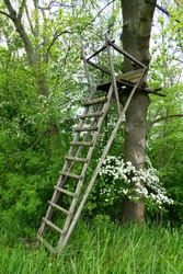 Lookout tower for hunters on the edge of the forest