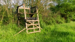 Lookout wooden ladder seat, also known as hunter's seat, hunter's high seat between the trees in nature for observing wild animals, animal world covered with camouflage hunting camouflage net