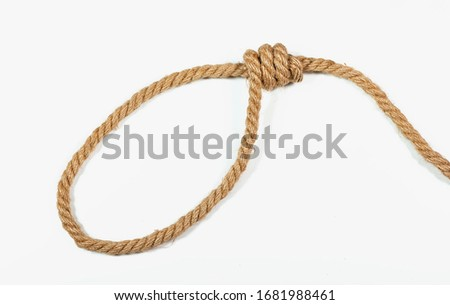Loop, hemp rope on a white background Photo stock ©