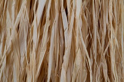 Loose hanging bast fiber for natural background
