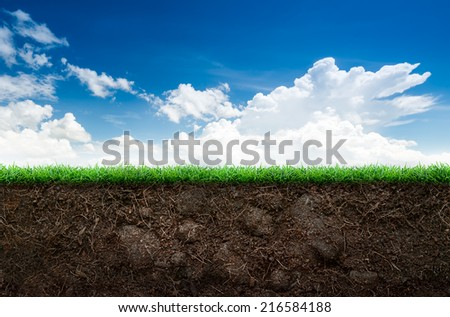 Loose soil and green grass on blue sky background #216584188
