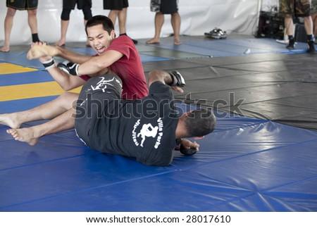 LOS ANGELES - APRIL 5:  Villa Park Jiu-Jitsu demonstrate Mixed Martial Arts (MMA) at the Little Tokyo Cherry Blossom Festival April 5, 2009 in Los Angeles.