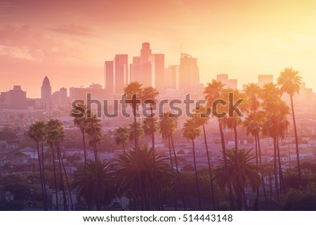 Shutterstock Los Angeles hot sunset view with palm tree and downtown in background. California, USA theme - background. Art photography
