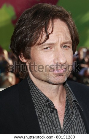 LOS ANGELES - JUL 20: David Duchovny at the 'The X-Files: I Want To Believe' - World Premiere at the Grauman's Chinese Theater in Los Angeles, California on July 23, 2008