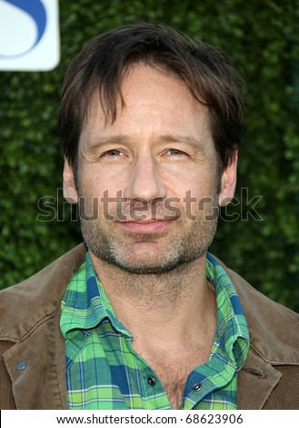 LOS ANGELES - OCT 11:  David Duchovny arrives to the Summer Press Tour 2010-CBS CW Showtime on October 11, 2010 in Beverly Hills, CA
