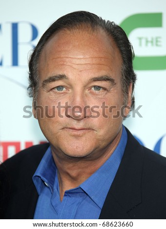 LOS ANGELES - OCT 11:  James Belushi arrives to the Summer Press Tour 2010-CBS CW Showtime on October 11, 2010 in Beverly Hills, CA - stock photo