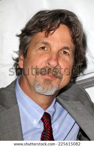 LOS ANGELES - OCT 16:  Peter Farrelly at the 2014 Media Access Awards at Paley Center For Media on October 16, 2014 in Beverly Hills, CA
