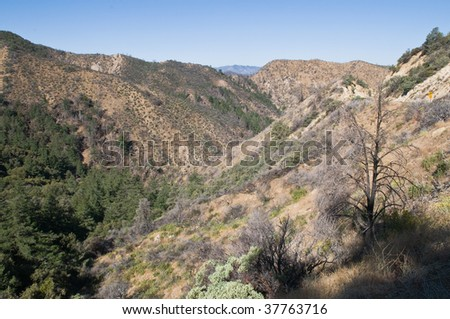 Los Padres National Forest north of Ojai, California