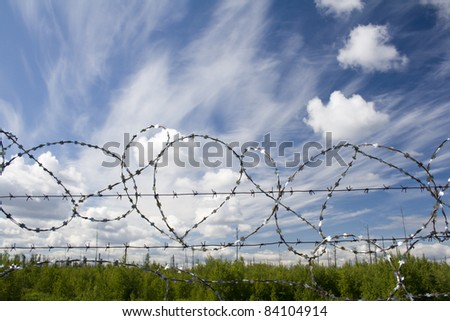 Lost freedom behind barbed wire. Green forest and blue sky. Law