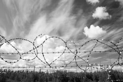 Lost freedom behind barbed wire. Law. Black amd white photo