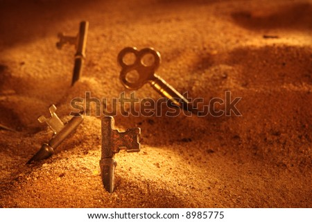 Lost keys (focus on front key)