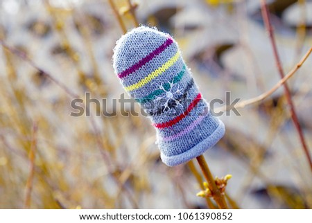 Lost mitten of a child on a branch of a Bush, abstraction, garment #1061390852