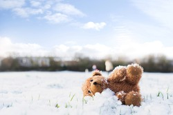 Lost Teddy bear with sad face lying on snow with blurry people,Lonely bear doll laying down on the playground in winter, Lost toy or Loneliness concept, International missing Children