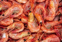 Lot of boiled frozen wild shrimp with caviar cooked in sea water. Background of group small aquatic crustaceans. Prawn - Asian sea delicacy cuisine as an appetizer. Close-up flat lay of tasty seafood.