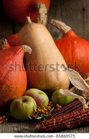 Lot of orange and butternut pumpkins with apples and corns on old wooden table