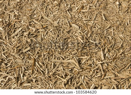 Lots of fresh wood chippings close up.