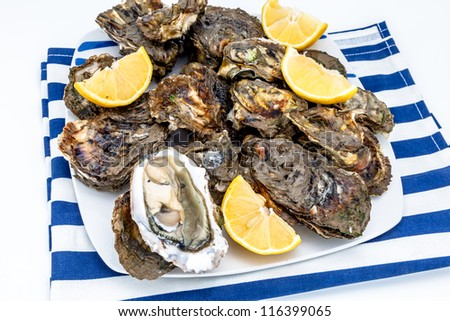 Lots of oysters on a dish with lemon