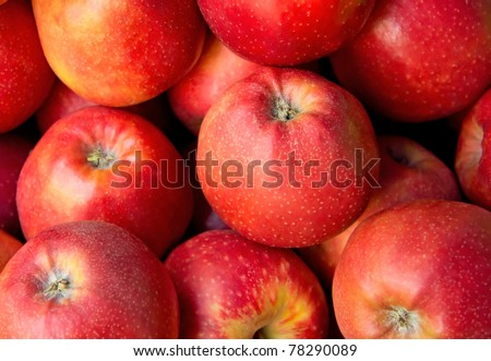 Lots of Red ripe apples background.