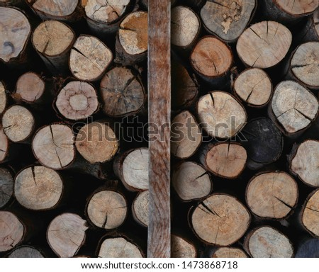 Lots of timber divided into two groups