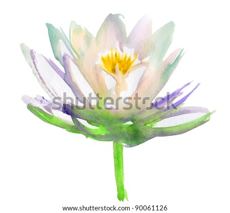 Lotus flower. watercolor