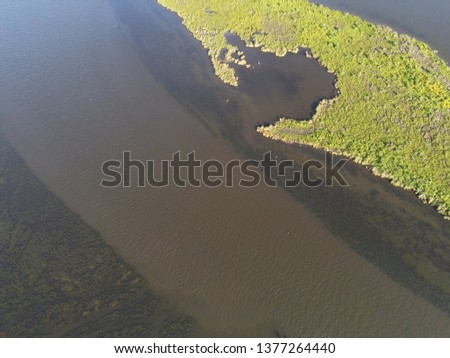 louisiana marsh scenery