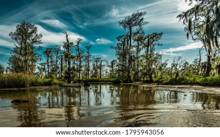Louisiana swamp lands near New Orleans Сток-фото ©