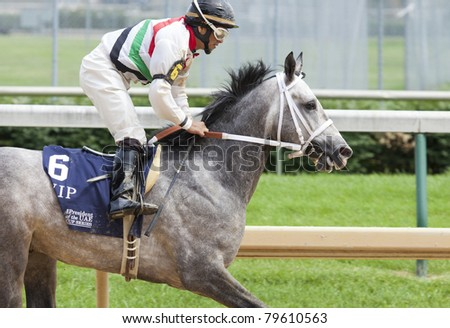 LOUISVILLE, KY - JUNE 18: Stephen Foster Day at Churchill Downs horse race track June 18, 2011 in Louisville, KY. VIP (jockey Aldo Canchano) places 6th at the Arabians race