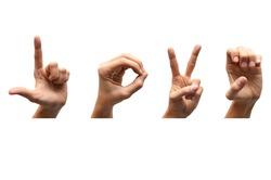 Love american sign language