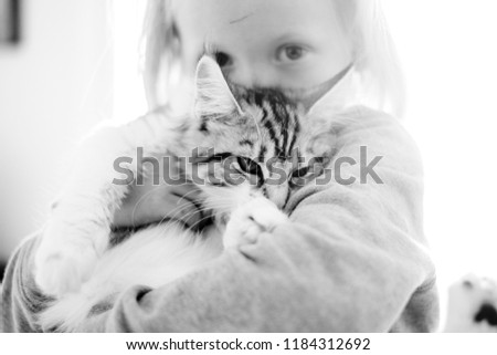 love concept with beautiful children and sweet grey cats hugging and staying together in friendship. best friend lovely feline like perfect companion at home