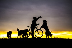love dogs and cyclists