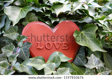 love heart in the ivy #1197810676