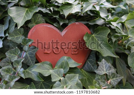 love heart in the ivy #1197810682