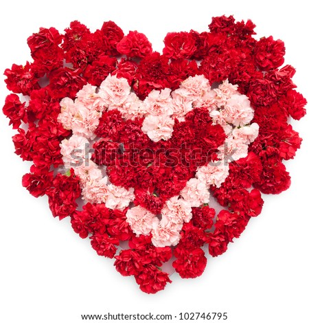 love heart flowers, Beautiful flower