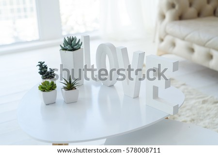 Love inscription on a white table with succulents in a white living room #578008711