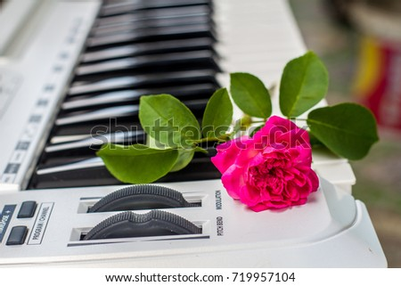 Love songs Piano with pink flowers #719957104