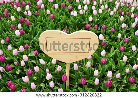 Love Text Box Surrounded by Tulip