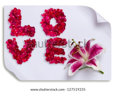 Love word made from red rose petals and lily flower on paper