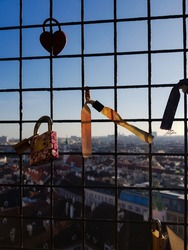 Lovelock at a window of St. Stephen's Cathedral in Vienna