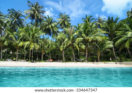 Lovely Beach with Turquoise Water and Green Palm Trees on a Tropical Island