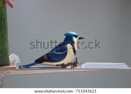 LOVELY DOLL BIRD  #711043621